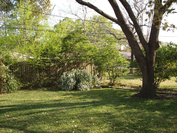 back yard-2 4513 hummingbird houston Texas real estate